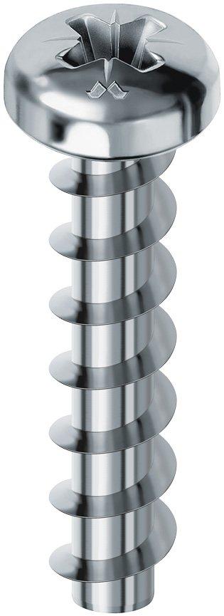pielle testa cilindrica pz