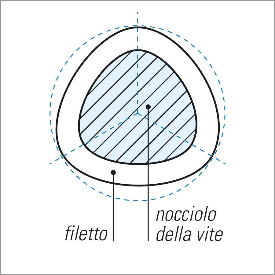 plastex trilobata sezione gambo